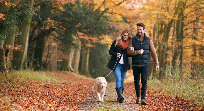 Read more about the article Cohabiting is not always a walk in the park
